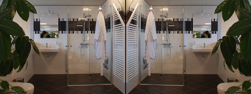 Badkamer aanpassen, badkamer renovatie gehandicapten, mindervaliden ...